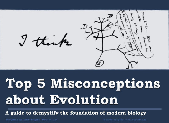 Top 5 Misconceptions About Evolution
