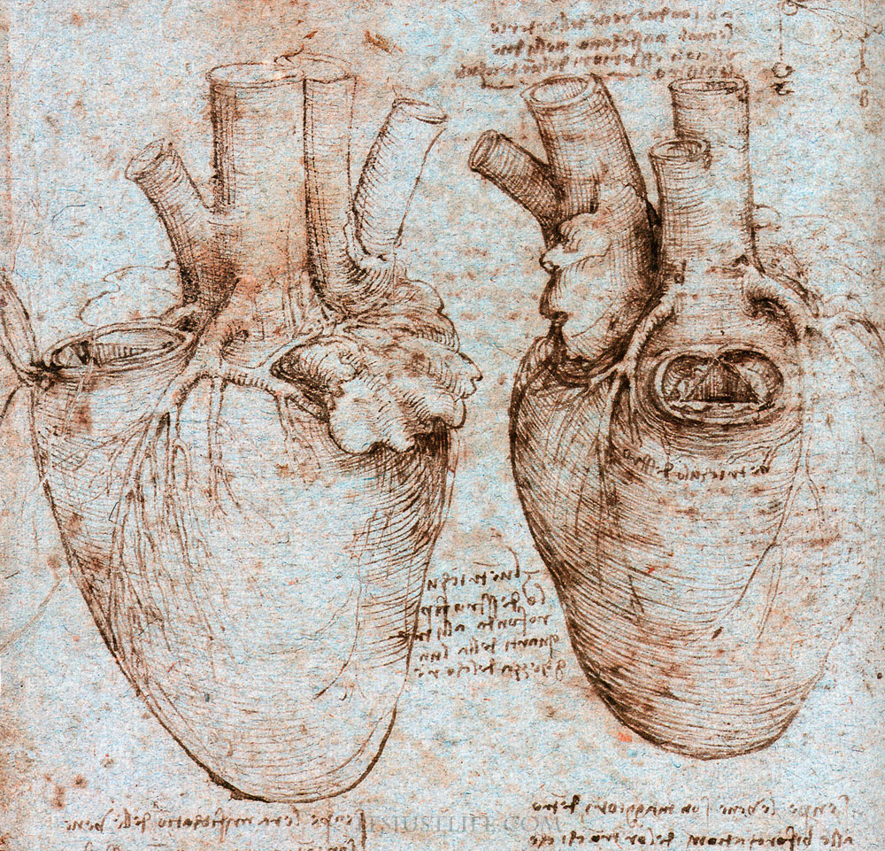 Da Vinci Clue for Heart Surgeon