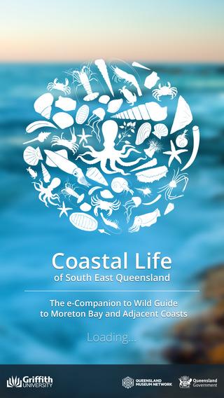 Coastal Life of South East QLD