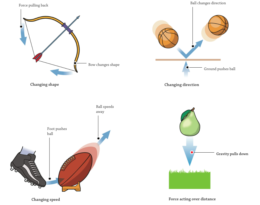 Forces and Motion Interactives