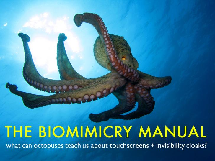 The Biomimicry Manual