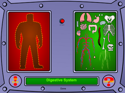Body Systems Game