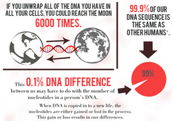 17 Things You Should Know About DNA