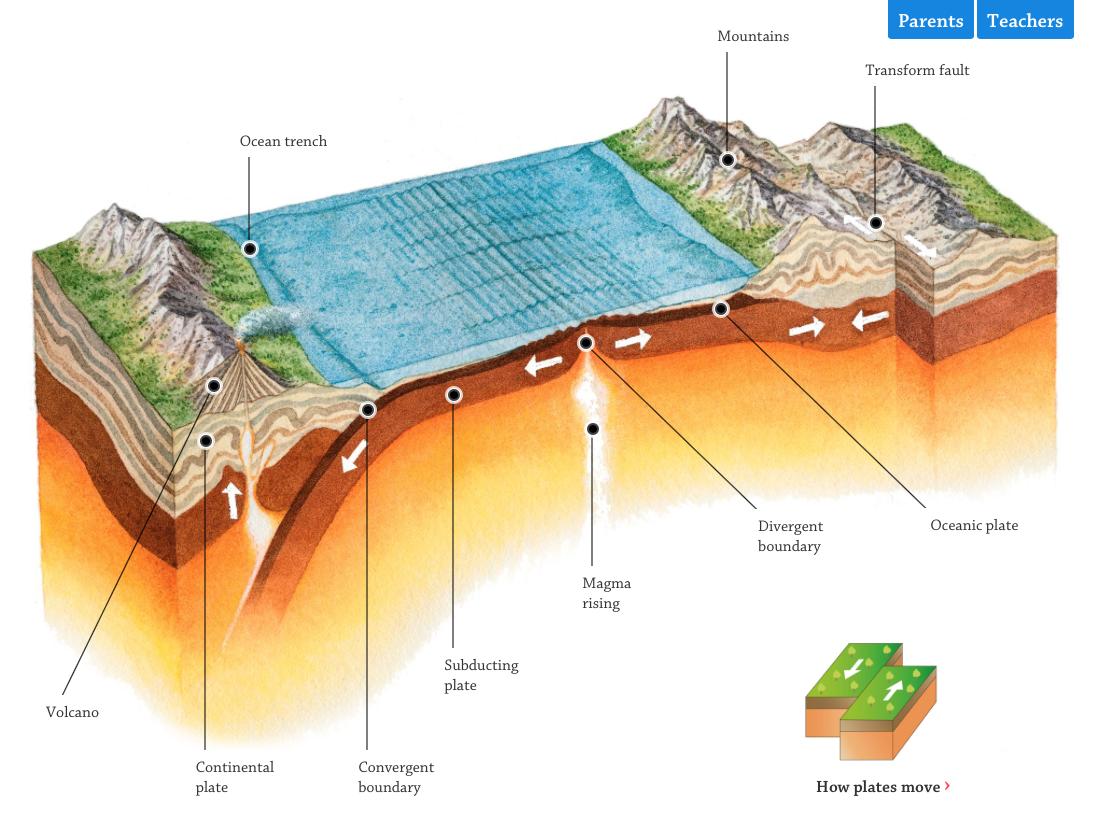 Tectonic Plates Interactive