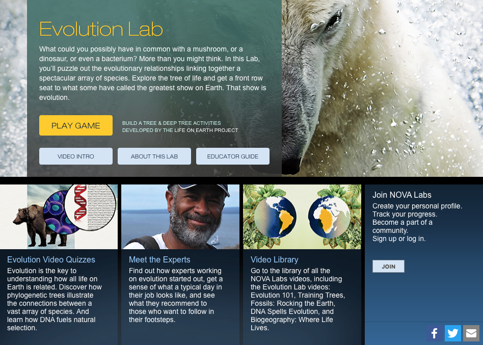 Evolution Lab