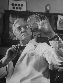 Sir Alexander Fleming Biography