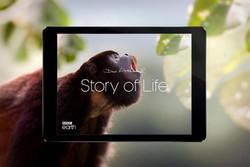 iPad App Attenborough Story of Life