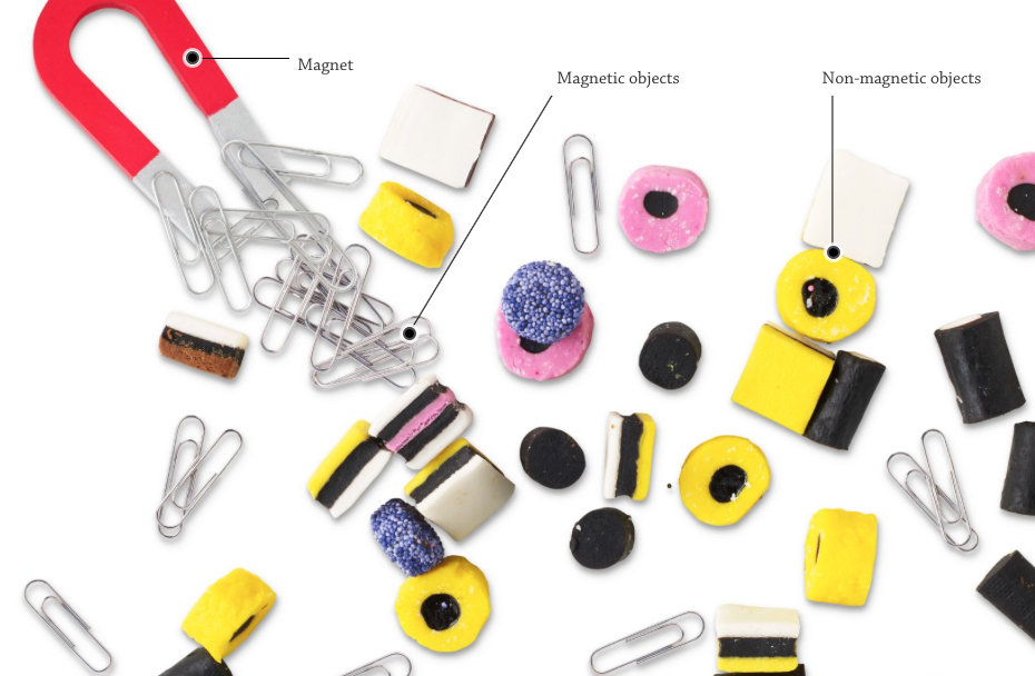 Magnets Interactive