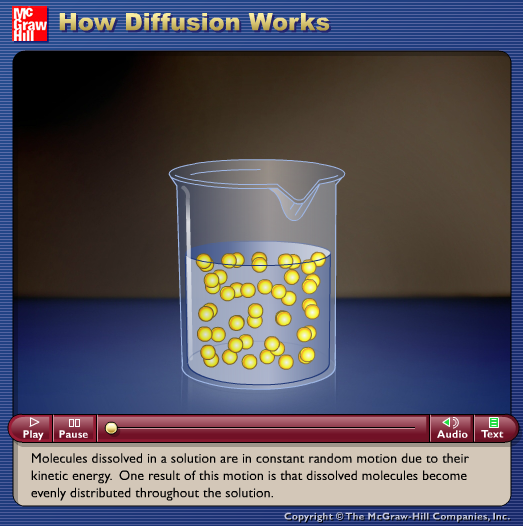 How Diffusion Works Animation