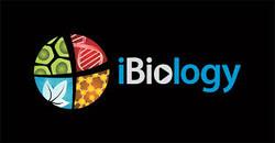 iBiology