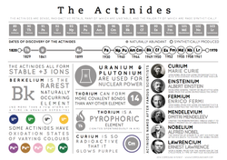 The Actinides