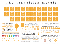 The Transition Metals