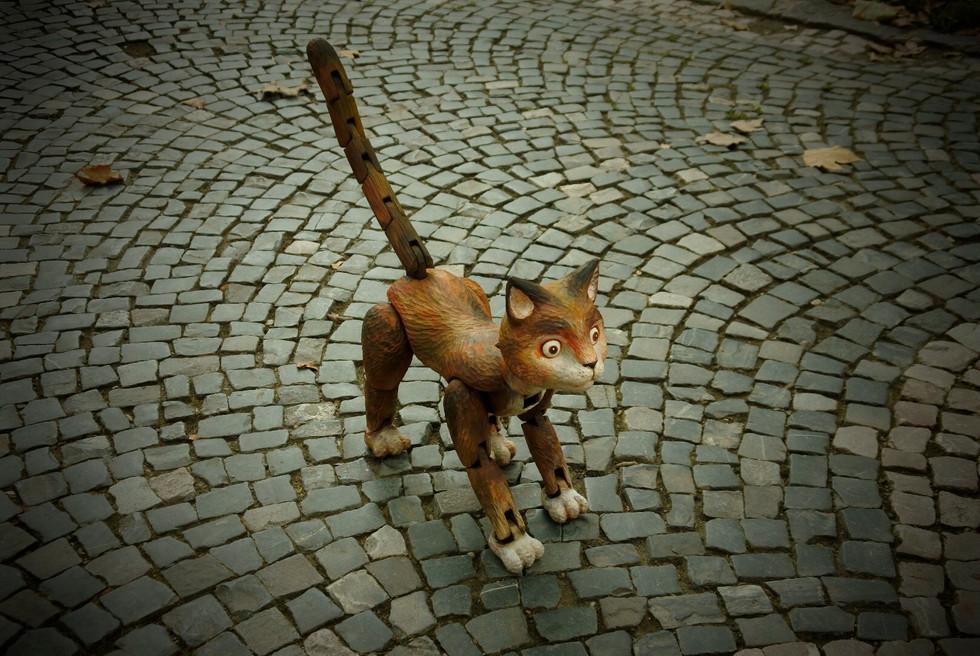 「Kouzelná kočka」2018