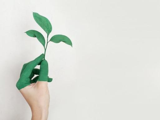 Sostenibilidad: Epson se compromete a tener una huella de carbono negativa en 2050