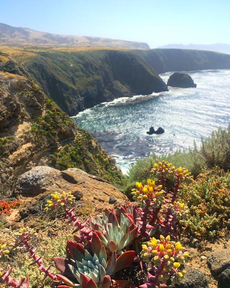 Springtime on Santa Cruz Island