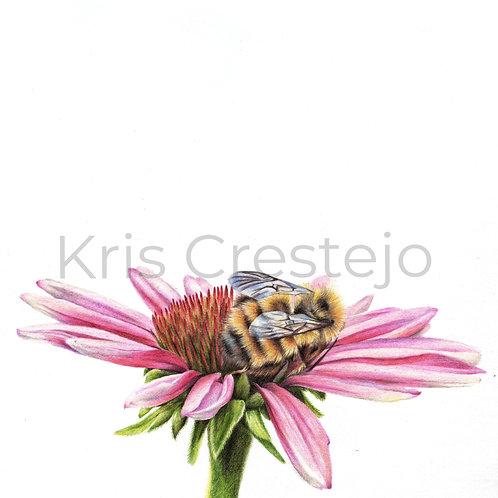 A Bees Tea