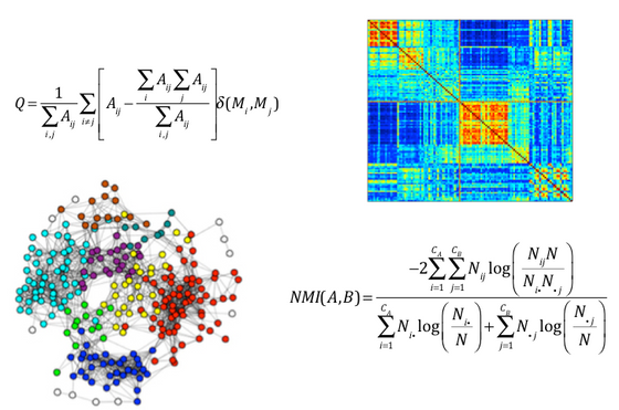 Computational approaches to fMRI analysis