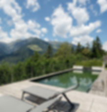 Naturpool Garten Dahoam Naturresidence Schenna Südtirol