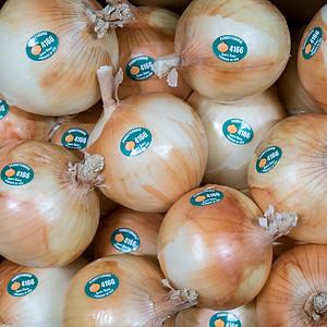 Pennsylvania Simply Sweet Onion