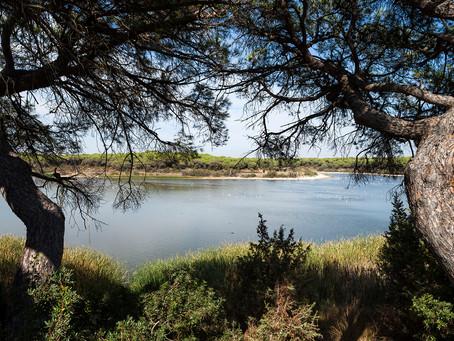 La laguna de El Portil: Un lugar único, en un entorno mágico