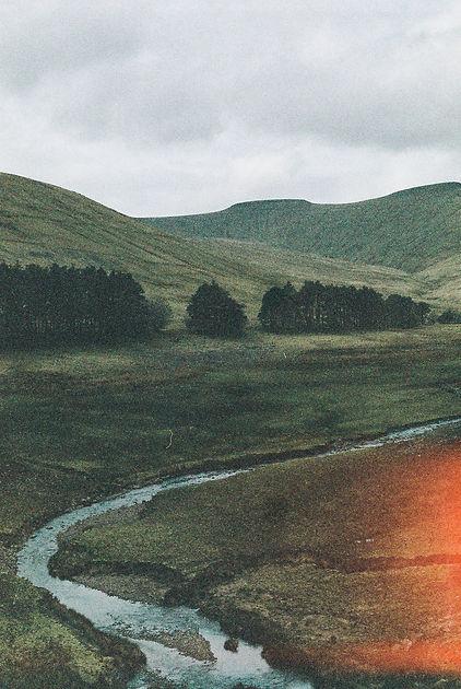 river wale.jpg