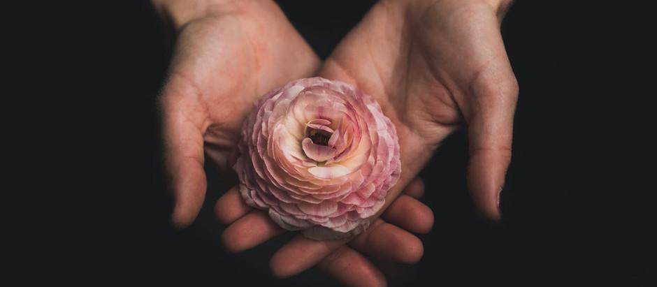 Healing - Call, Open, Receive & Cherish