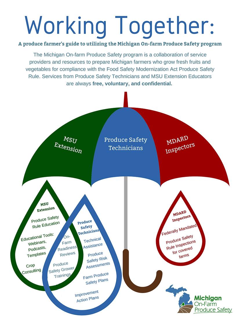 Working Together Umbrella (2).png
