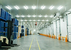 Warehouse Cold Storage