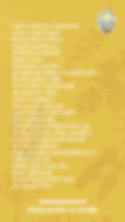 PS23_yellowflower.png