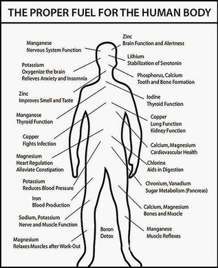 102 Minerals that make up the body