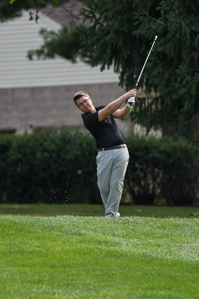 ne golf 2