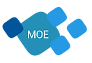 moe stom consulting business intelligence