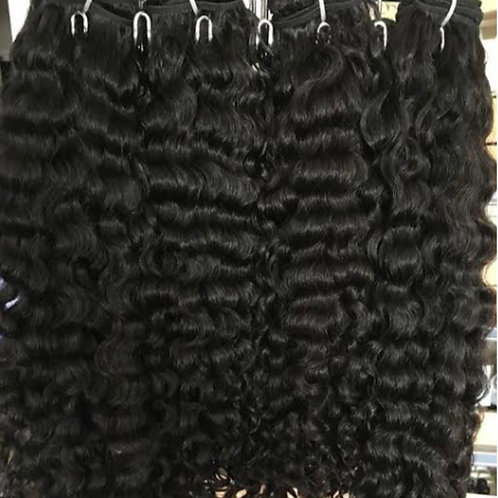 Burmese Curly 3 Bundle Deals