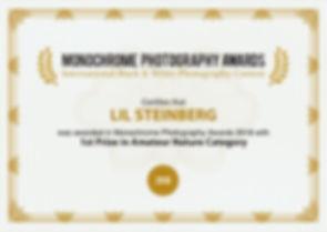 monoawards_certifcate_LIL_STEINBERG-(4).