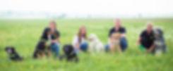 Ausbildug Therapiehund Therapiehundeausbildung