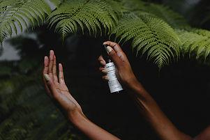 hand spray.jpg