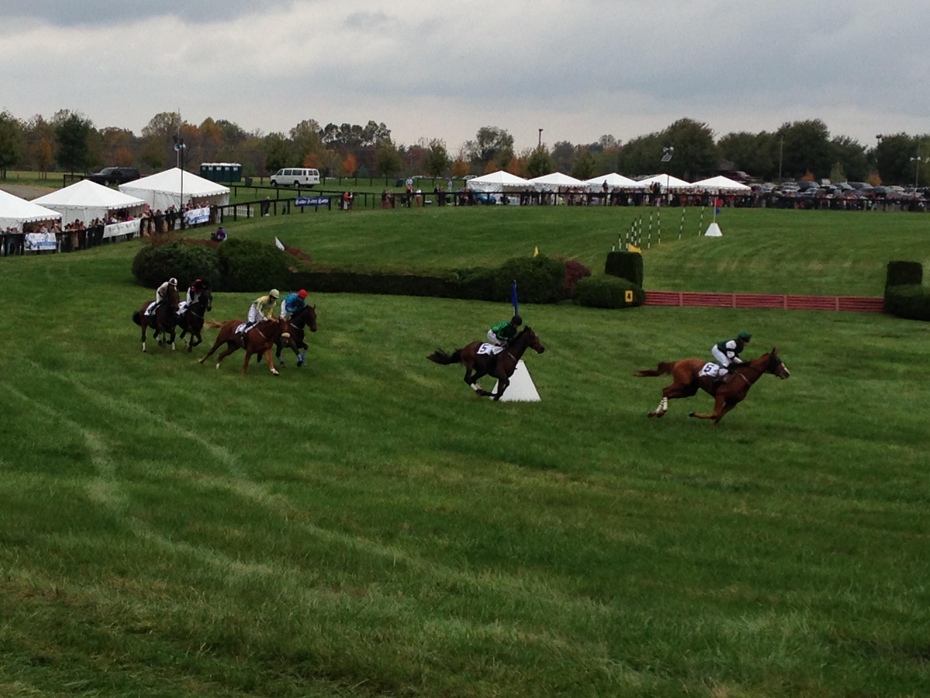 Horse Race 14.jpg