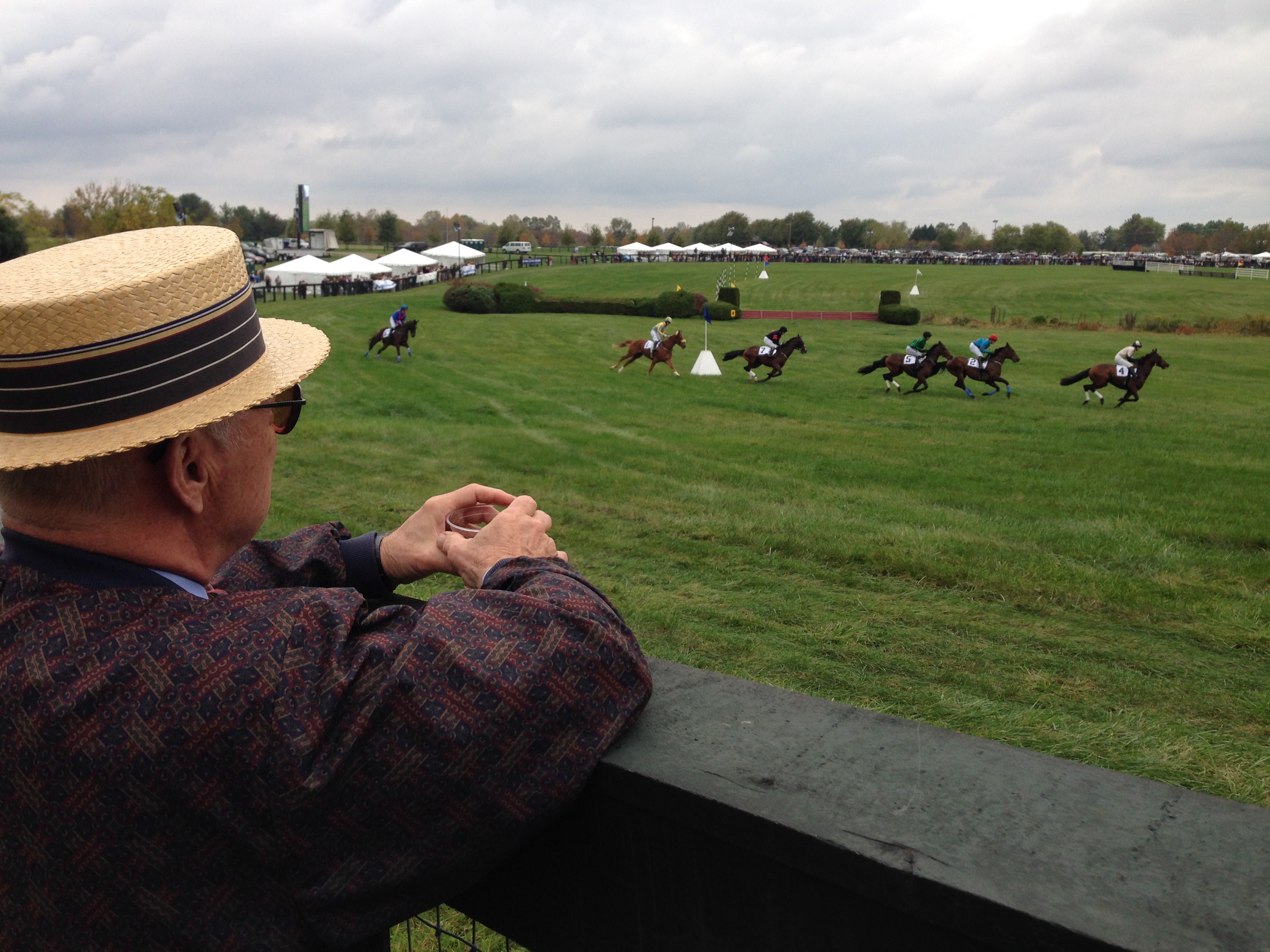 Ted overlooks the horse race 2.jpg