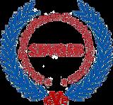 SDVOSB Transparent.png
