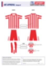 S2 Sports Customized Soccer Design V9