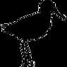 kisspng-bird-sandpiper-computer-icons-cl