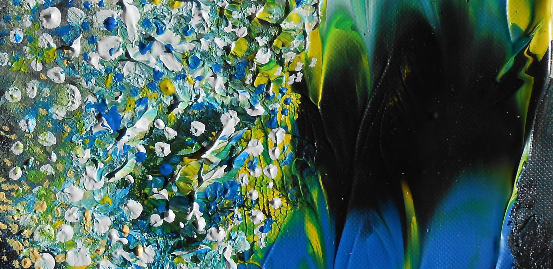 Series Patagonian Petals