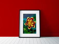 Poster - Flowerpower.jpg
