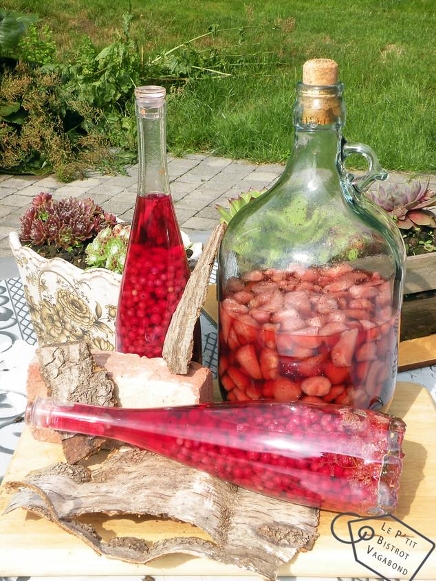 Les Fruits Rouges du Jardin... quelques bouteilles qui, l'hiver venu, réchaufferont les papilles