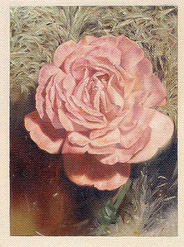 Isa's_roses_web.jpg