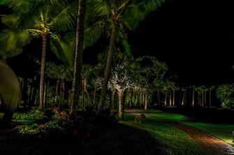 Estate Lighting