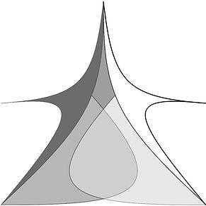 Case-study-Liger-image-2-model.jpg