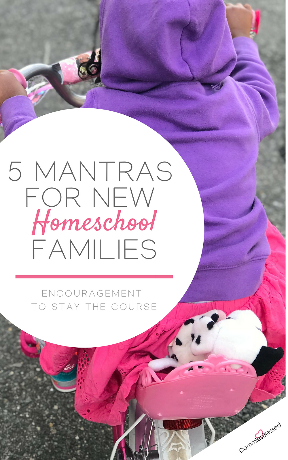 5 Mantras For New Homeschool Families | DommiesBlessed