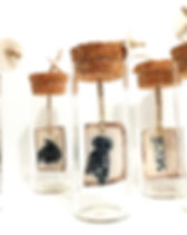 capsules poétiques _ morgane thomassin