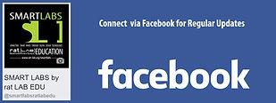 SL facebook.jpg